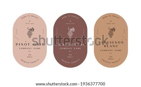 Vector set illustartion design labels for wine. Minimalistic and modern design
