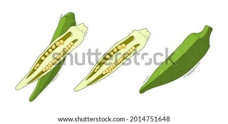 vector set illustration, vegetable abelmos okra gombo on white background. Stock fotó ©