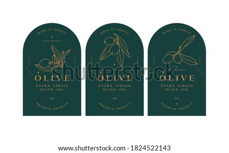 Vector set labels with olive branch - simple linear style. Emblems composition with olives and typography Сток-фото ©