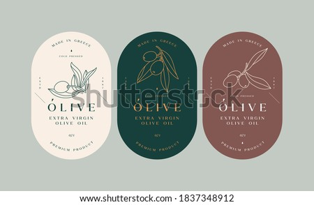 Vector set labels with olive branch - simple linear style. Emblems composition with olives and typography Foto d'archivio ©