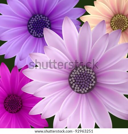 vector set: night flowers