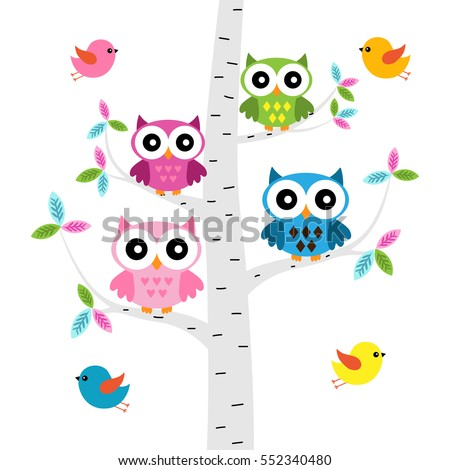 vector set of a colorful owls