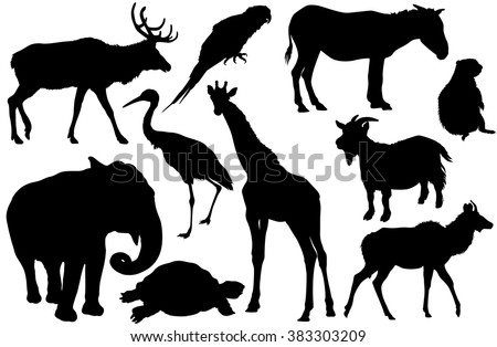 vector set of animal