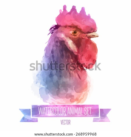 Vector set of animals. Cock hand painted watercolor illustration isolated on white background