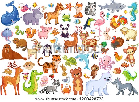 Vector set of animals. Home favorites. Mammals. Marine life. Illustration in cartoon style.
