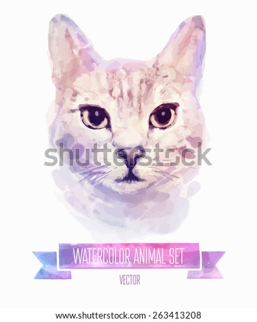 vector set of animals kitten