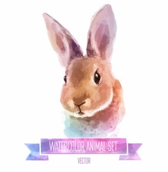 Vector set of animals. Rabbit hand painted watercolor illustration isolated on white background