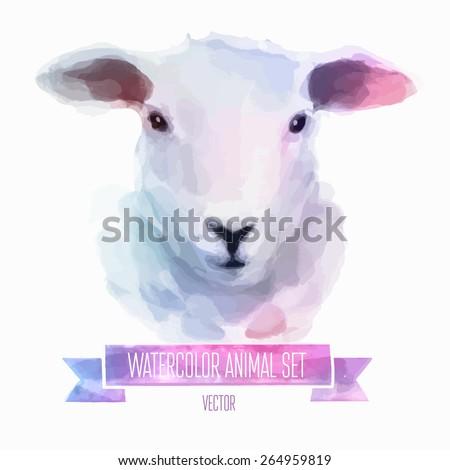 vector set of animals sheep