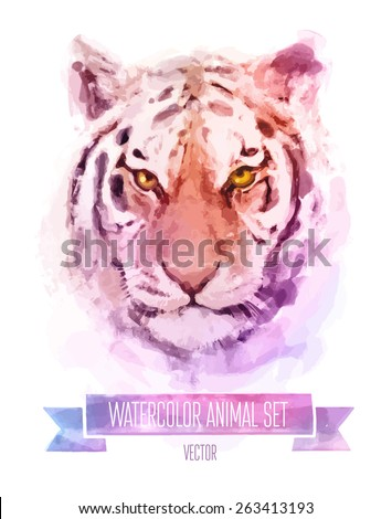 vector set of animals tiger