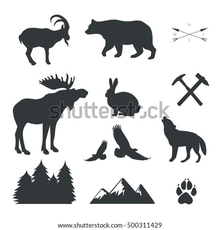 Vector set of animals,wild beasts,forest fauna images isolated on white background