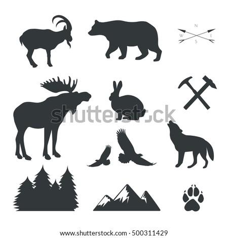 vector set of animals wild