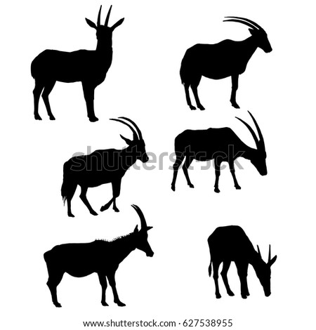 vector set of antelopes