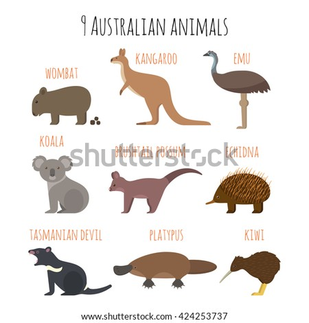 Vector set of Australian animals icons. Emu, wombat, kiwi, koala, kangaroo. Flat style.