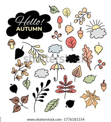 vector set of autumn drawings