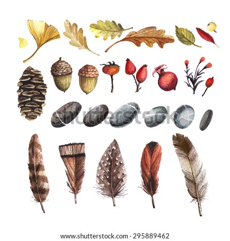 vector set of autumn nature