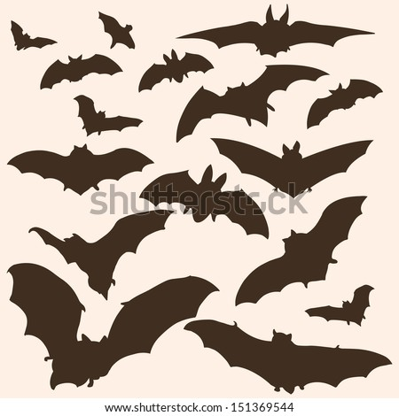 vector set of bats silhouettes