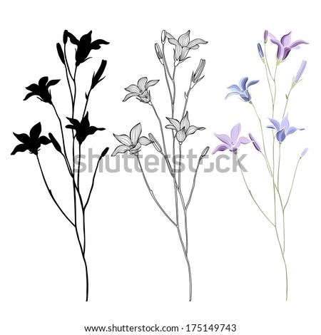 Vector set of bellflower on a white background  #175149743