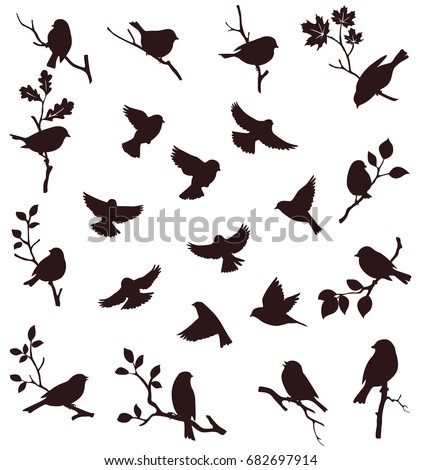 vector set of birds and twigs