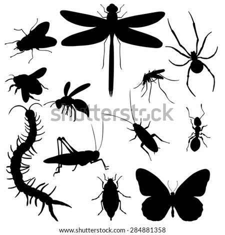 vector set of black insects