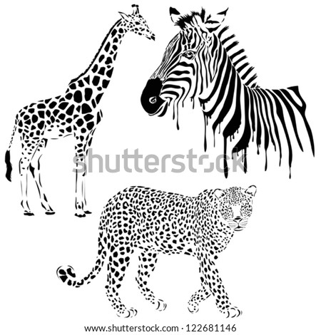 Vector set of black silhouette wild animals, zebra, leopard, giraffe
