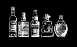 Vector set of bottles of alcohol in ink hand drawn style. isolated on black. Distilled beverage