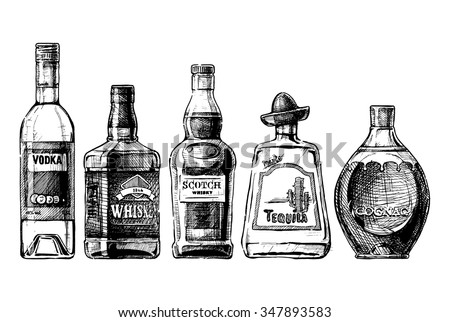 Vector set of bottles of alcohol in ink hand drawn style. isolated on white. Distilled beverage