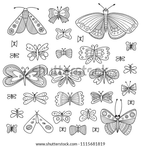 vector set of butterflies in