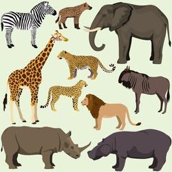 Vector set of cartoon african animals. Safari animals: hyena,hippopotamus,rhinoceros, elephant,giraffe, zebra,wildebeest, lion, leopard, cheetah.