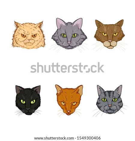 Vector Set of Cartoon Cats Faces. Feline Portraits.