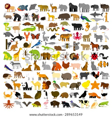 Shutterstock Vector Set Of Cartoon Different Animals Isolated