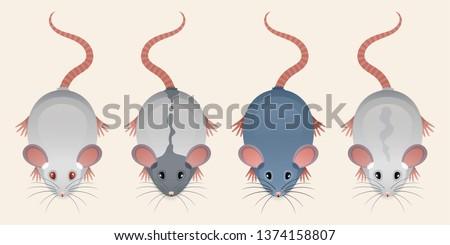 vector set of cartoon rat