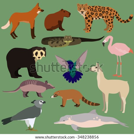 vector set of cartoon south