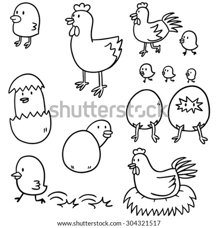 vector set of chicken and egg