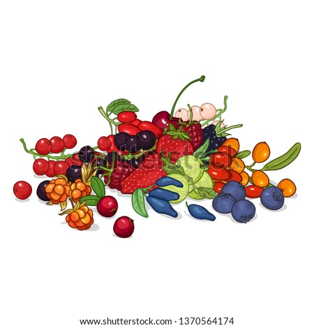 Vector Set of Color Cartoon Berries in Pile