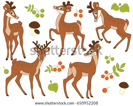Vector set of cute cartoon deers. mushrooms, berries and leaves. Vector baby deer. Deers vector illustration