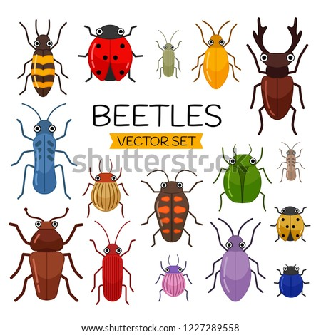 stock-vector-vector-set-of-cute-cartoon-insects-different-beetles-on-an-isolated-background