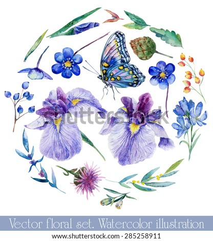 Vector set of different blue, lilac flowers for design. Watercolor irises, cornflower, wildflowers, leaves, berry, butterfly Foto stock ©