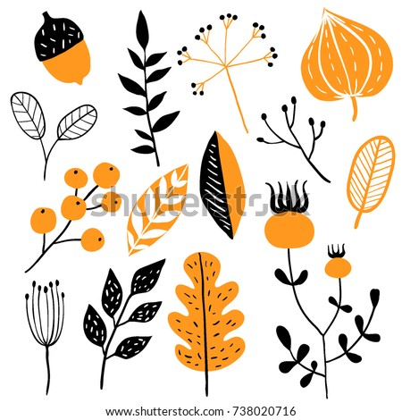 Vector set of doodle floral elements. Autumn collection. Flower graphic design. Herbs, berries and wild flowers. Hand drawn vector botany set. Modern fall seasonal decor