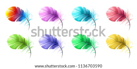 vector set of feathers multicolor, feather parrot, green, yellow, purple, light, airy, windy. purple, Paradise birds, red feather