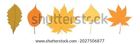 vector set of five autumn