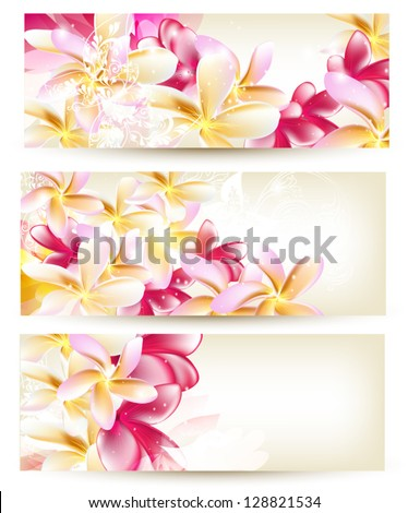 Vector set of Floral cards with pink gardenia flowers