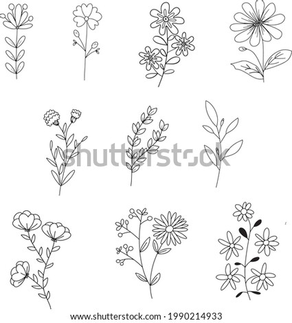 Vector set of floral elements with hand drawn flowers.