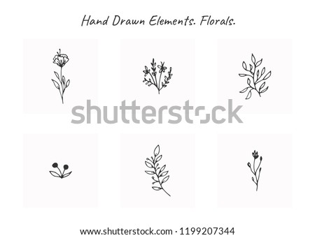 Vector set of floral hand drawn elements in elegant and minimal style. Isolated objects, flowers and branches with leaves. For badges, labels, logotypes and branding business identity.