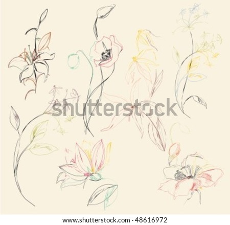 VECTOR Set of flower images