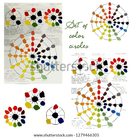 Vector set of flowers. Color circle. Vector color circle. Set of color circles. Different colors. Colors of rainbow. All colors of the spectrum. Polychrome Color circle for the artist.
