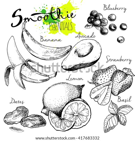 Vector set of fruits and vegetables for detox smoothie. Vegetarian healthy treating hand drawn  illustration. Use for bar, cocktail, flyer, banner, store