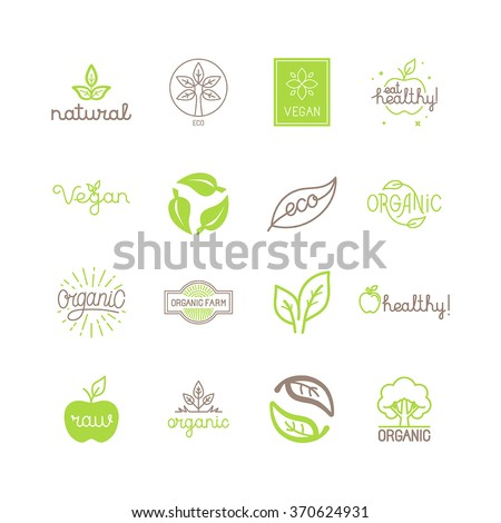 Vector set of green and organic products labels and badges - collection of different icons and illustrations related to fresh and healthy food -natural, vegan, organic and raw symbols