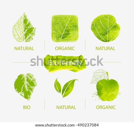 vector set of green labels and