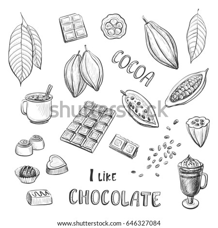 Vector set of hand drawing of cocoa and chocolate. Hand drawing on white background