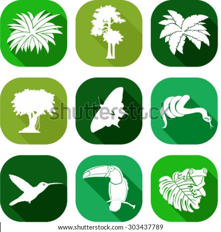 vector set of jungle flat icons